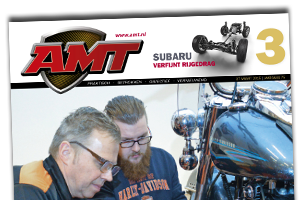 AMT 2015-3
