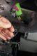 Diagnosetips uit de praktijk: VW Polo 9N startonderbreking